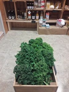 Foto Kale ecológico 3 - Noticias Ecológicos Aranda