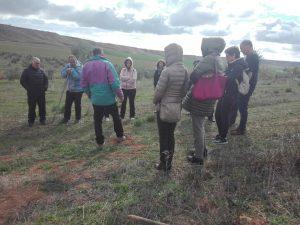 Foto 4 Mañana por el olivar ecológico - Noticias Ecológicos Aranda